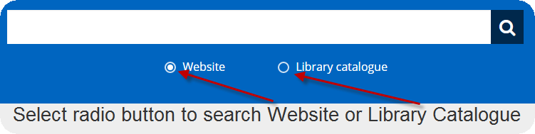 New Search bar